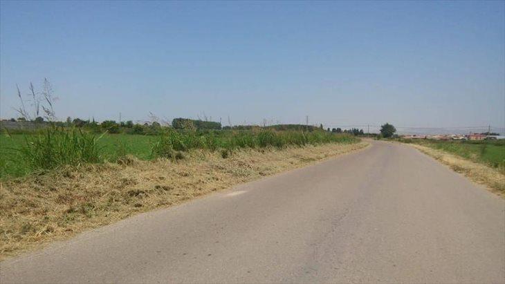 La Concejalía de Agricultura comienza el desbrozamiento de caminos