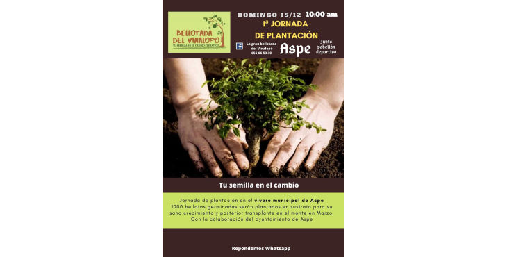 Cinco convocatorias de reforestación convergen este domingo en el Vinalopó y Bacarot